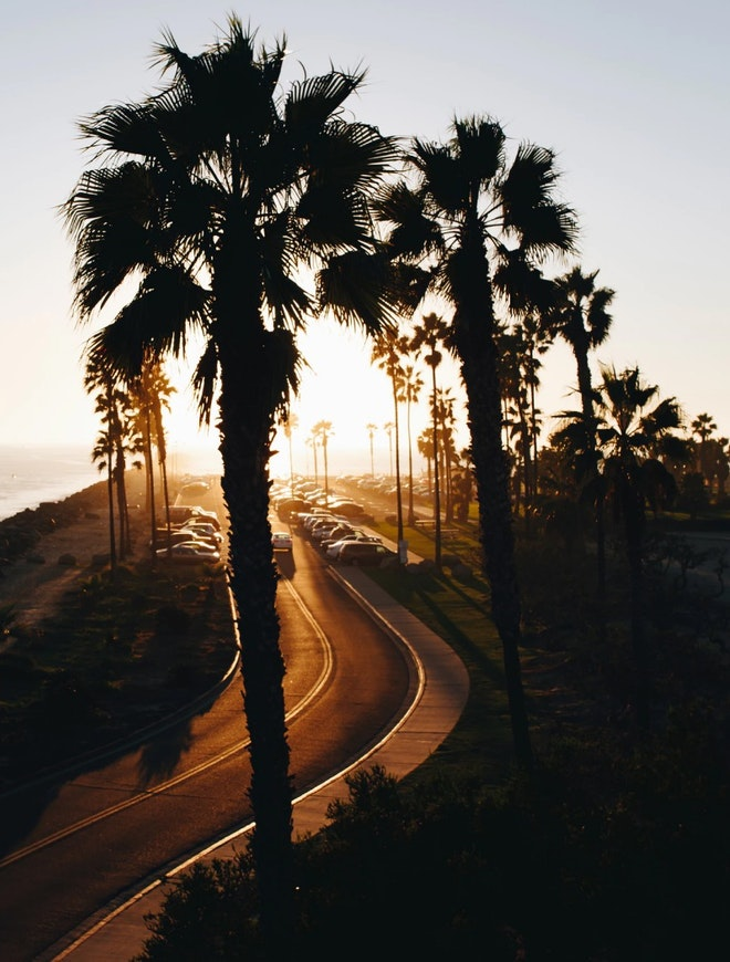 Sunset over San Diego beach front palm trees